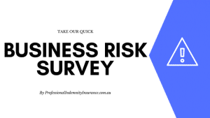 Quick business risk survey